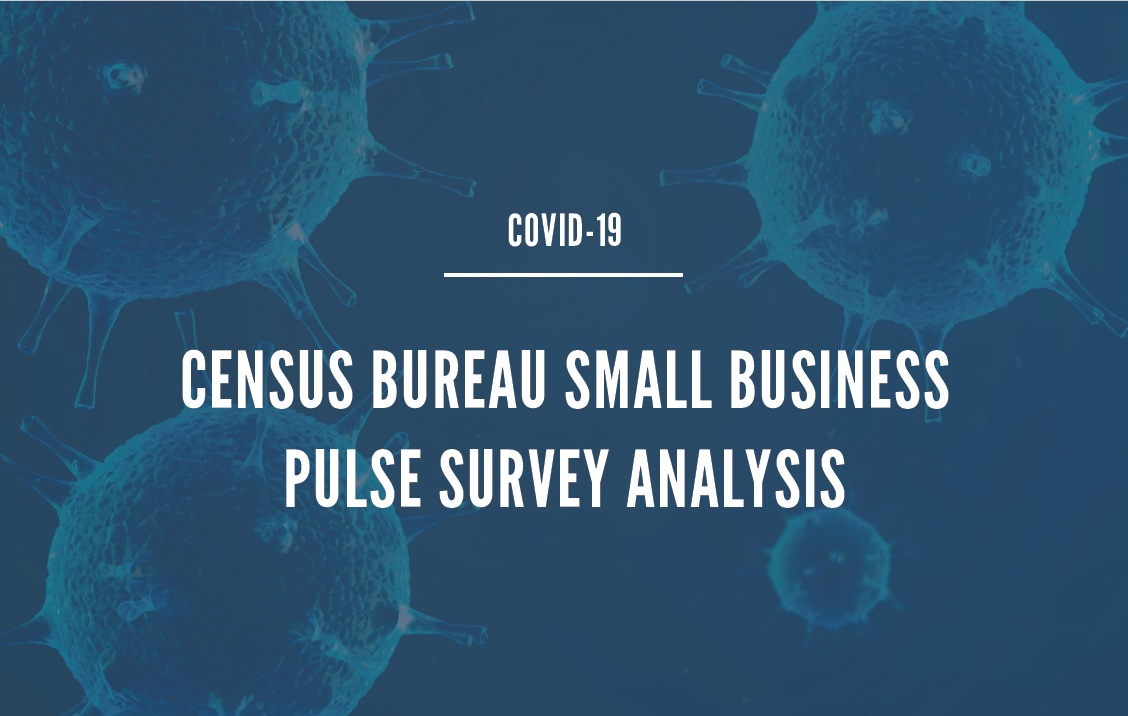 Census Bureau Small Business Pulse Survey Analysis