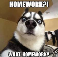 my-dog-ate-my-homework